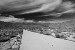 Old Road Split by T.M. Schultze