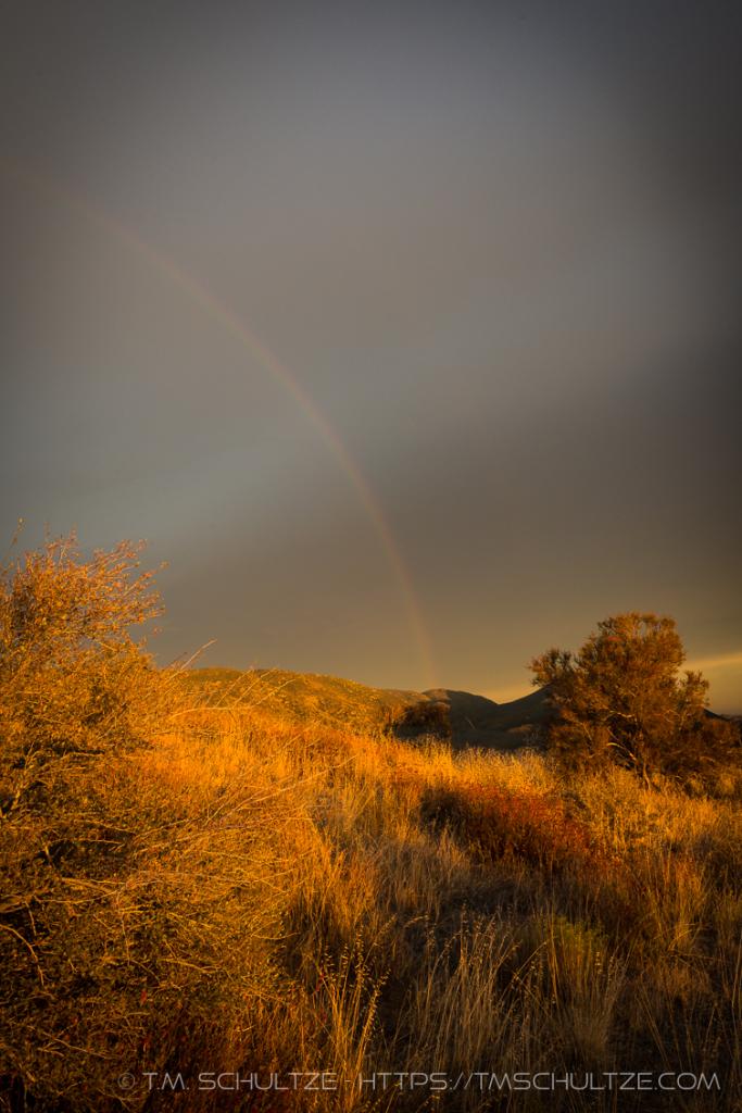 Chaparral Rainbow