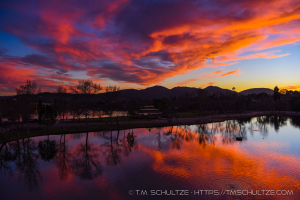 January 29 from Santee Lakes