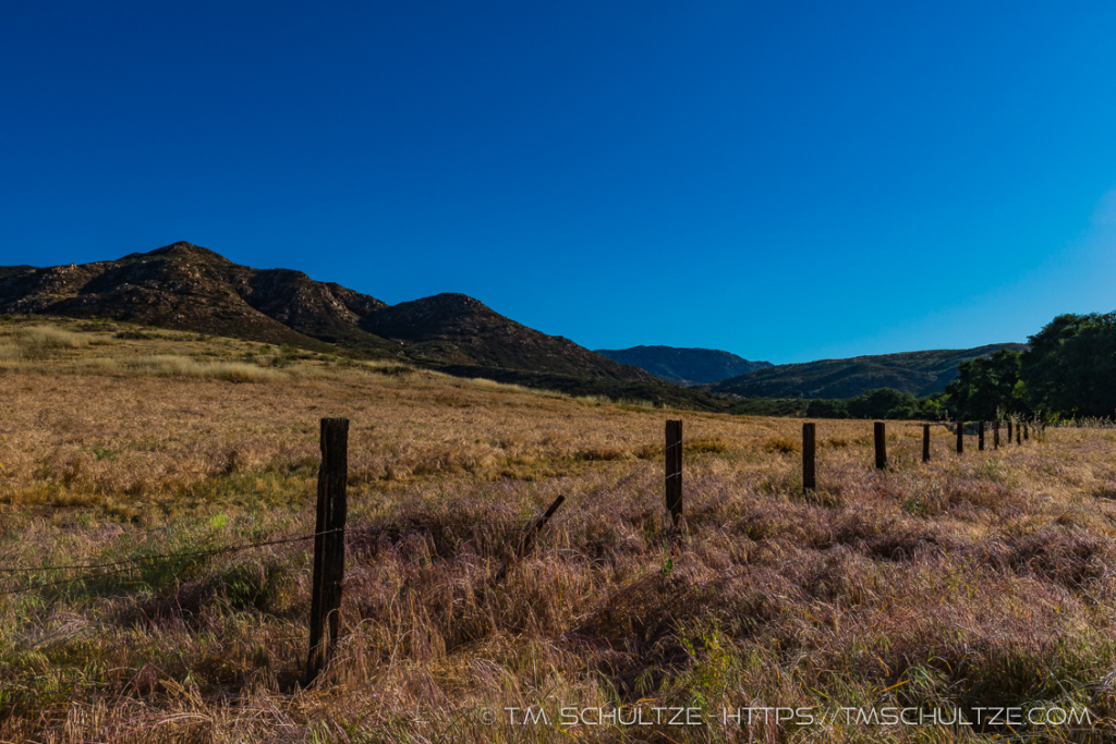 Old Ranch Fence - Hollenbeck Canyon