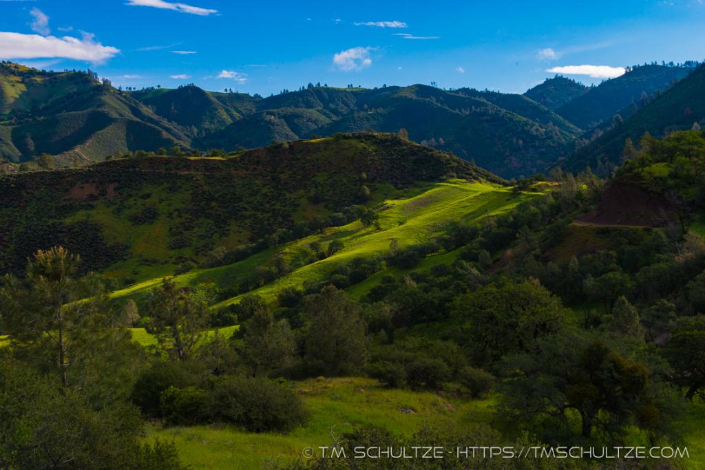 Canyon Below Figueroa Mountain Spring
