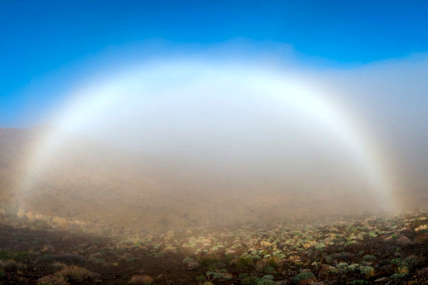 Fog Bow by T.M. Schultze
