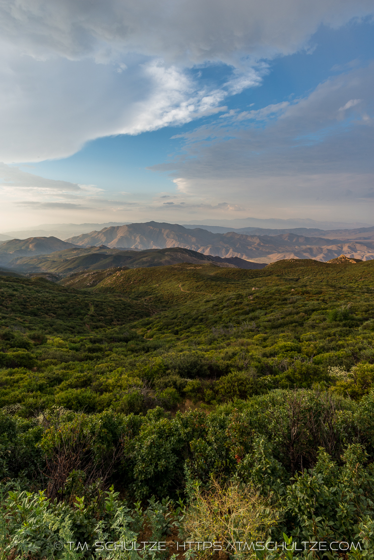Rolling Hills of Chaparral