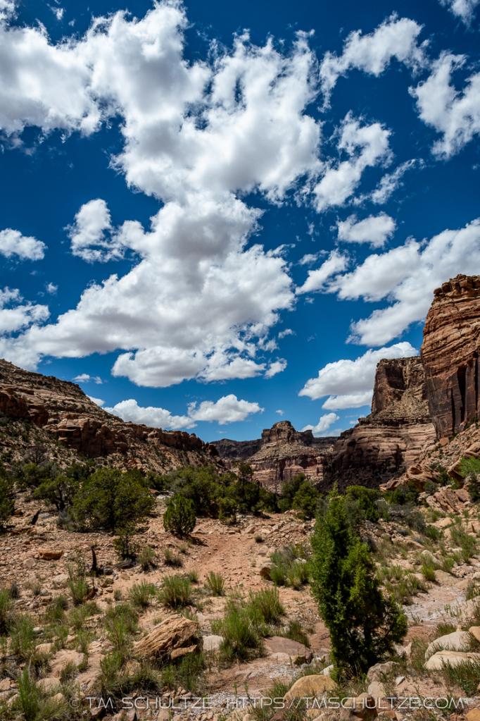 Sandstone Trails